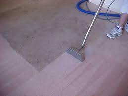 precimaxclean.com.au - cleaning services 2